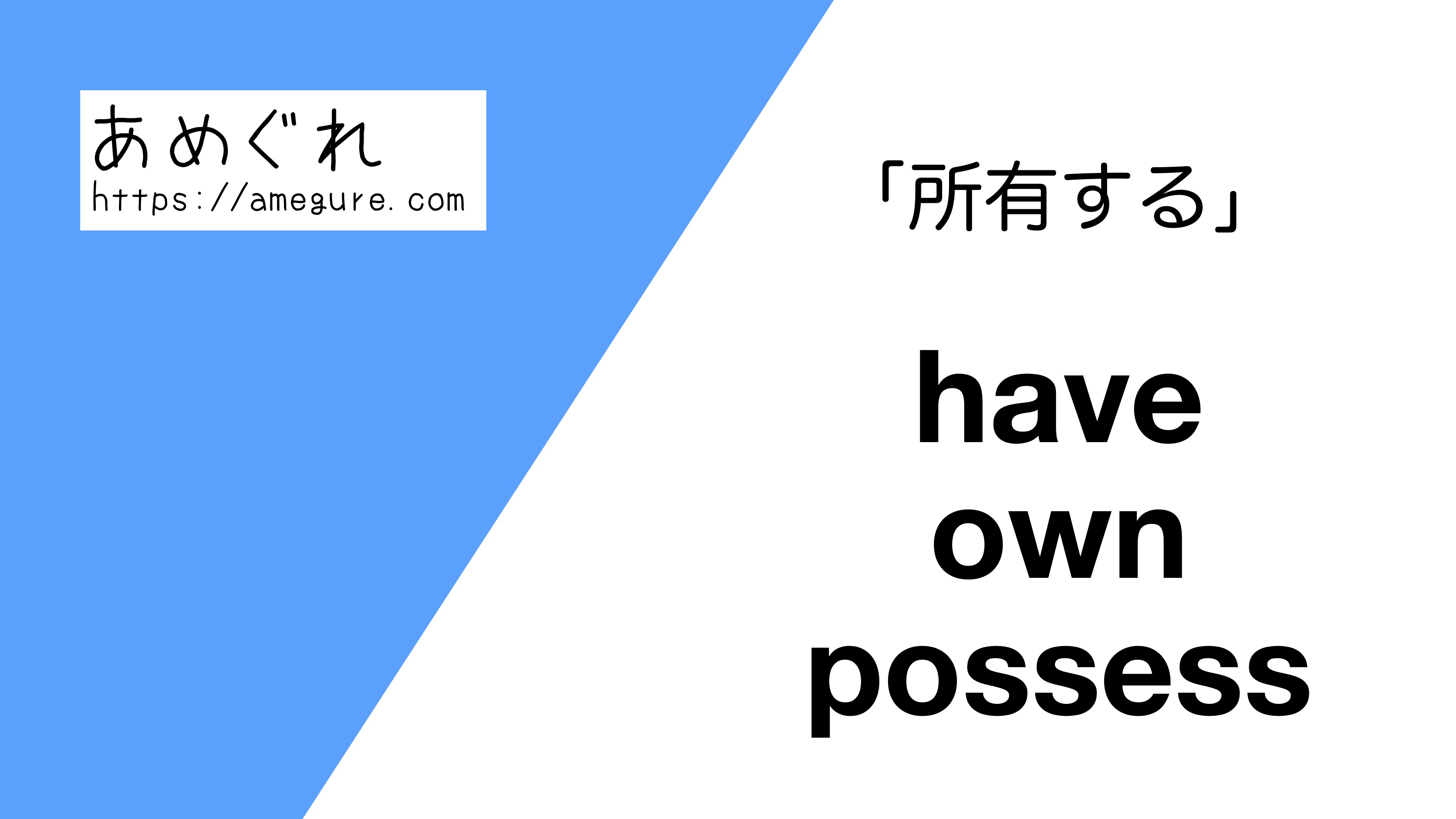 have-own-possess違い