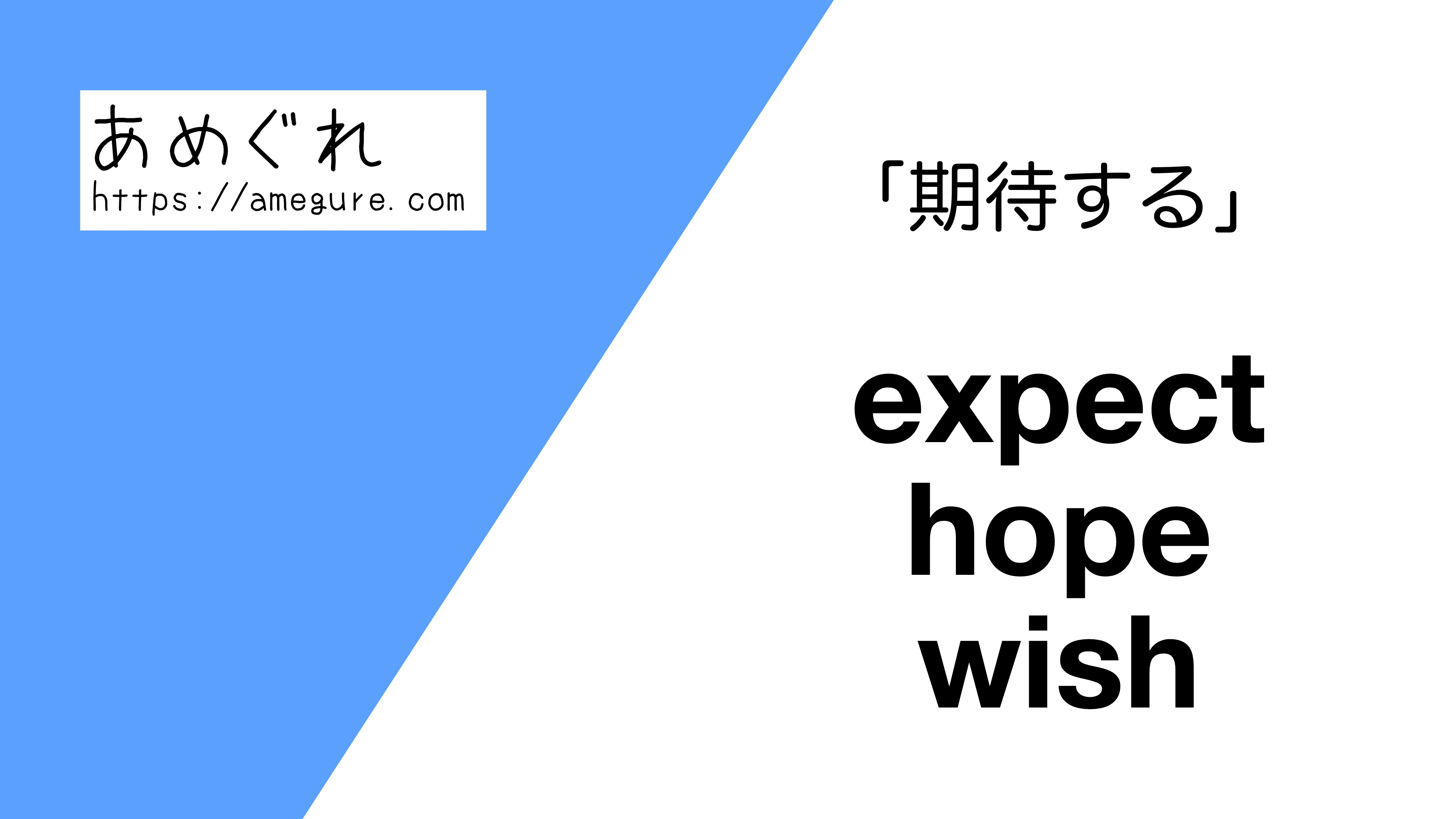 expect-hope-wish違い