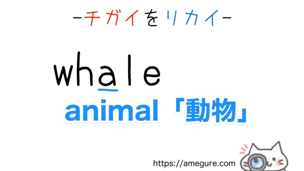 whale-whole違い