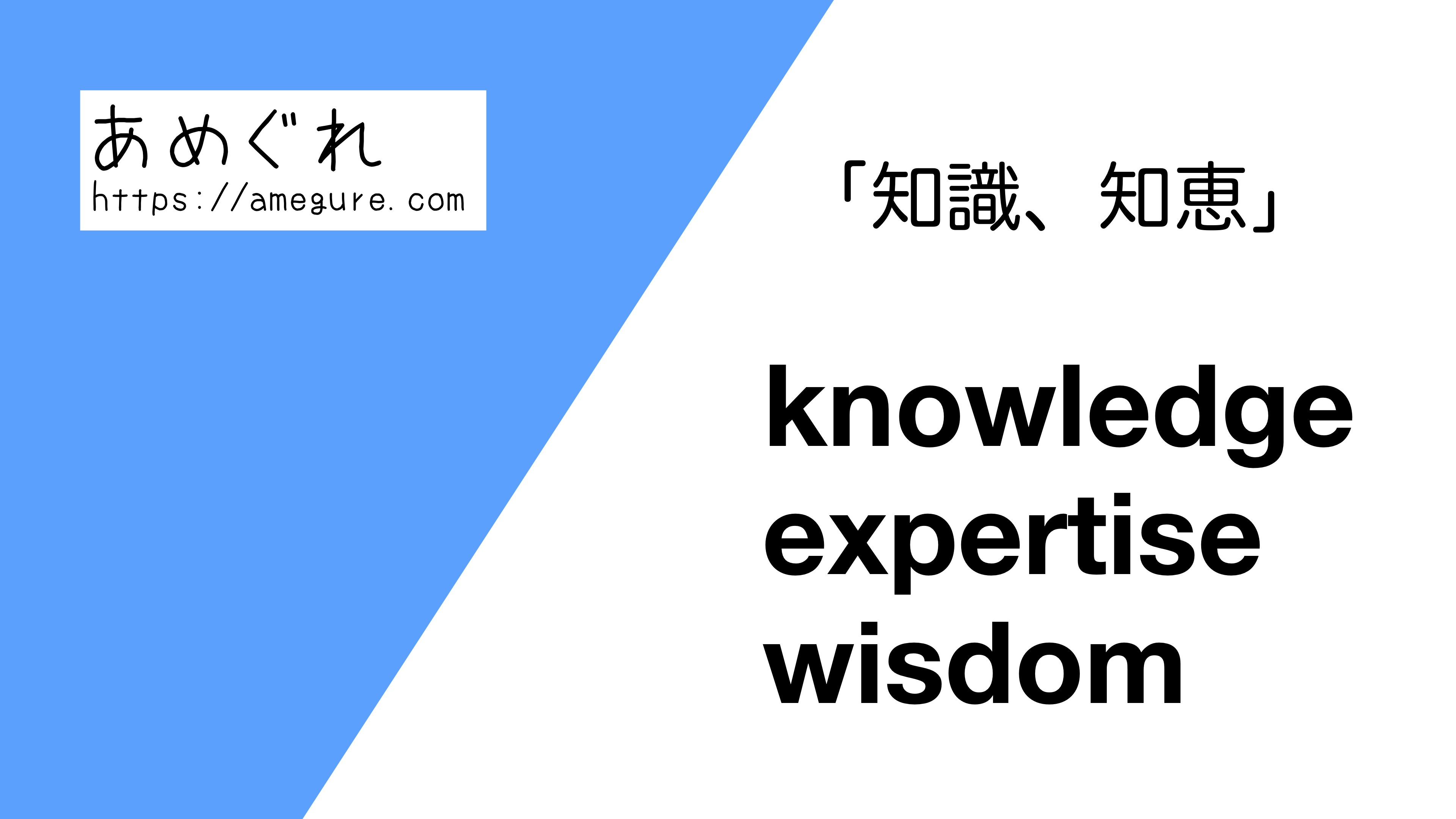 knowledge/expertise/wisdom違い