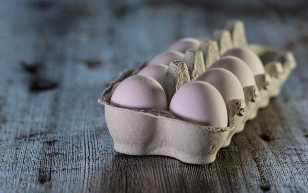 英語で卵はegg
