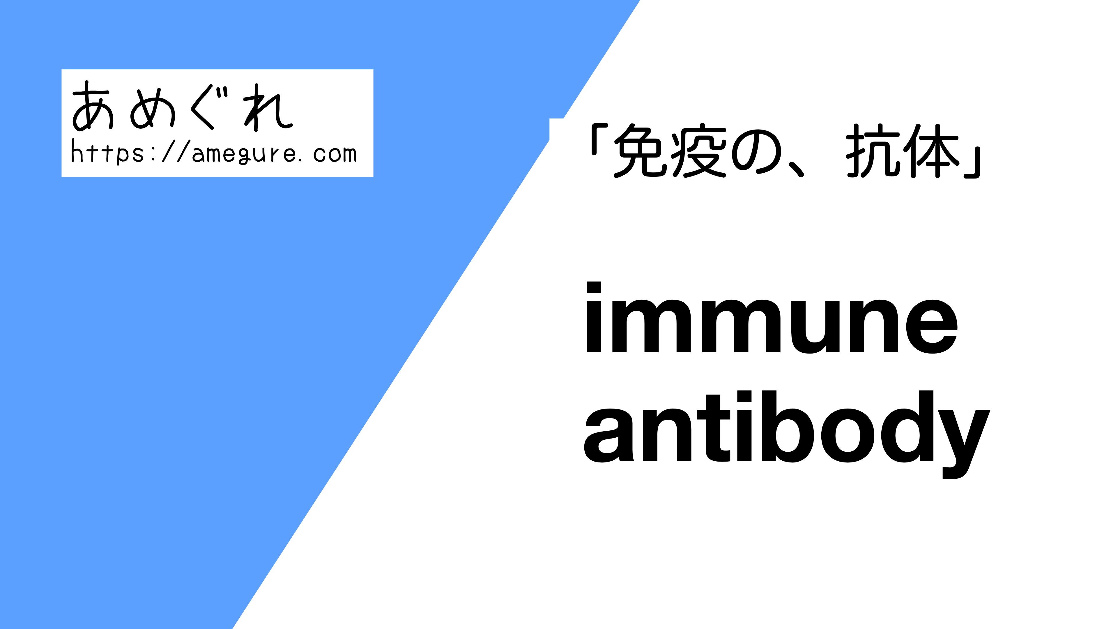 immune-antibody違い